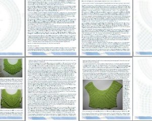 Screen shot of PDF